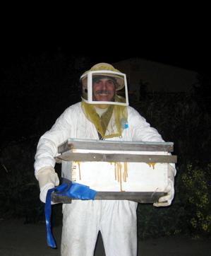 ken-w-bees.jpg