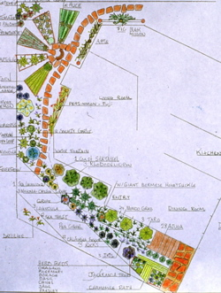 edible-landscape-design.jpg