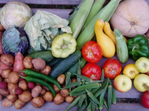 august_vegetables-small.jpg