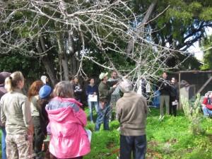 FB pruning class