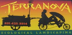 Terra Nova logo