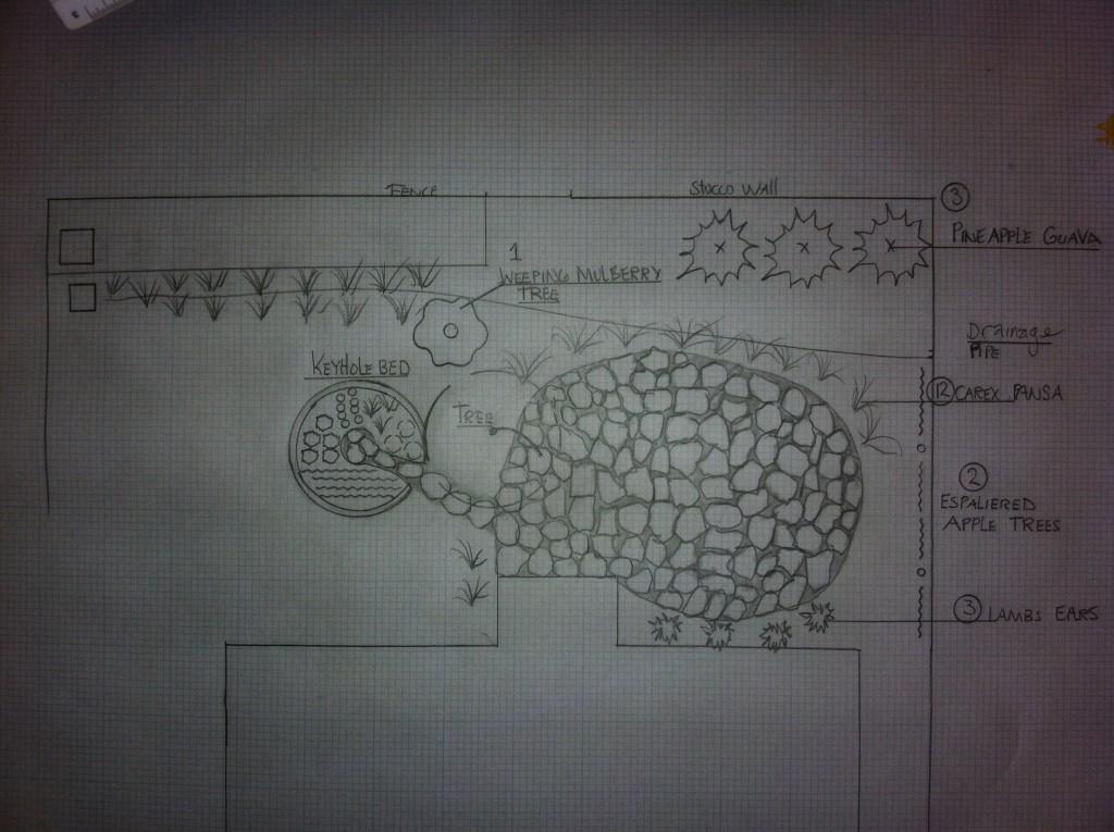 rough sketches end
