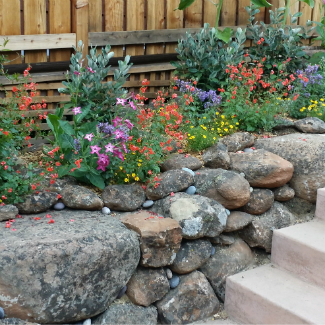 Rock wall with beautiful flowers