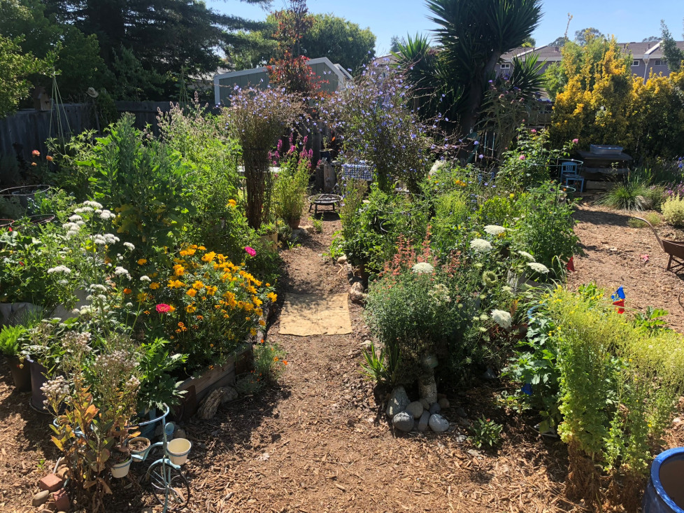 Make your garden resilient