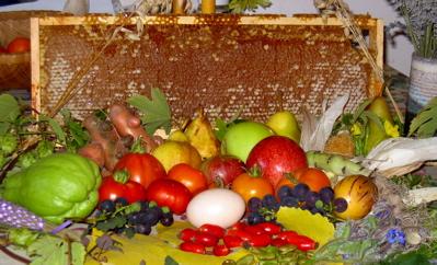 2006-harvest.jpg