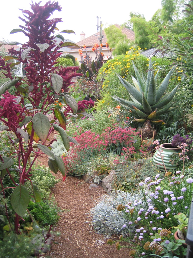 Lush, beautiful landscapes are more than possible with greywater.