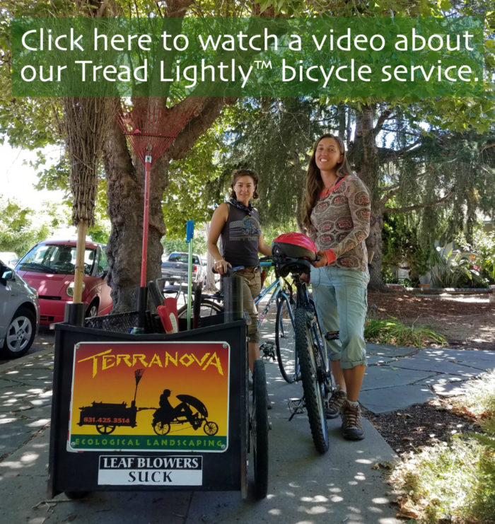 Click here to watch a video about our Tread Lightly bicycle service.