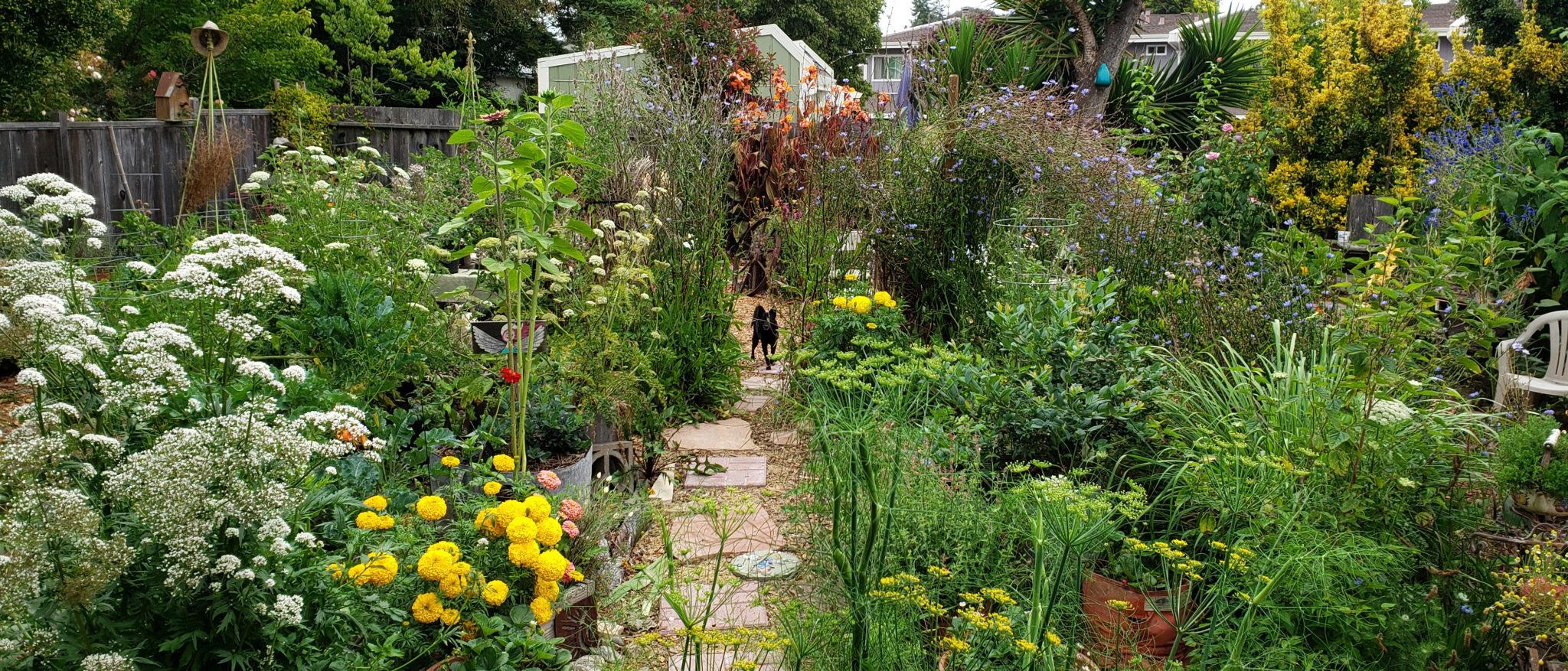 Terra Nova Farm Garden